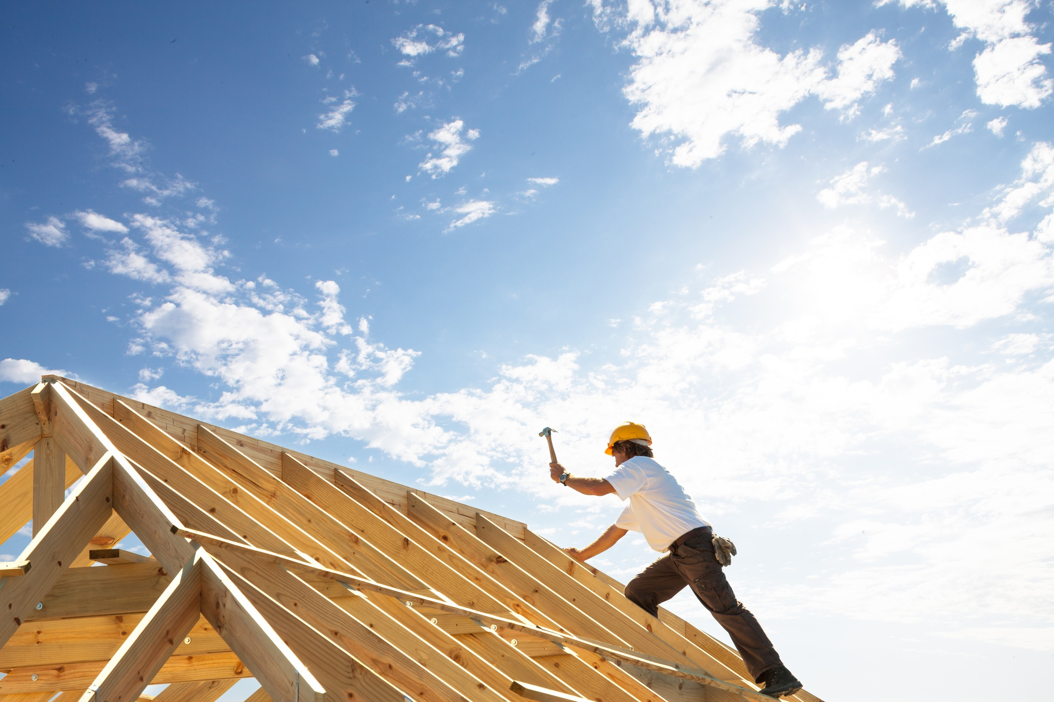 Your Name Doesn't Have to be Bob to Build a House; the Big, the Bad, the Ugly and the Get it Done