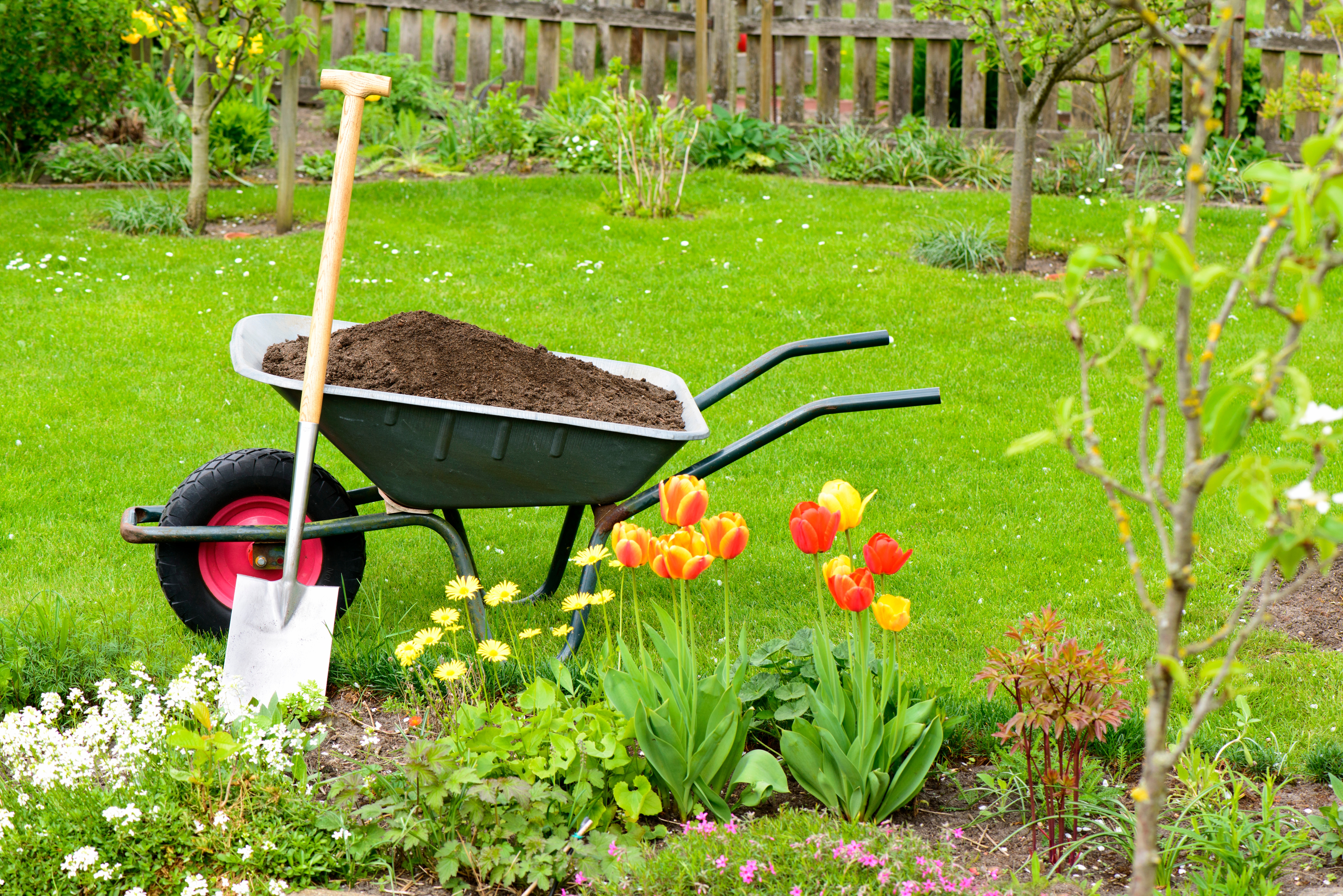 Up Your Home's Curb Appeal Without Upping Your Budget